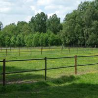 HIPPO SAFETY FENCE, INNOVATIVE BAND FOR FENCE