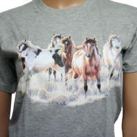 BOY T-SHIRTS DARK GRAY WITH HORSE