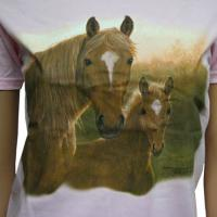BOY T-SHIRTS PINK WITH HORSE