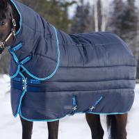 STABLE RUG HORSEWARE AMIGO INSULATOR 450 denari, 550 GR - 9507