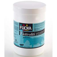 HORSE POWDER ELECTROLYTS 1000 grams jar FLICKA BIOEQUIPE - 1008