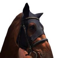 THERAPEUTIC MASK FOR HORSES FENWICK LIQUID TITANIUM MASK
