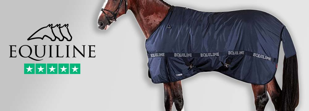 Equiline 200gr Clint Rug: the Winter's Best Friend!