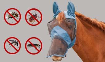 Ergonomic Anti Insect Mask